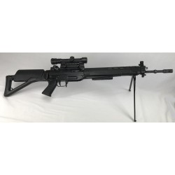 Carabine Sig 550/optique Hensold réglementaire cal.223